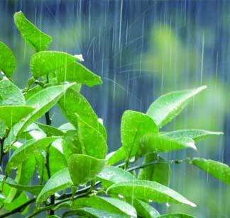 蓄電システムが浸水した場合は、速やかに販売店、施工店、もしくはメーカーに連絡をしましょう。