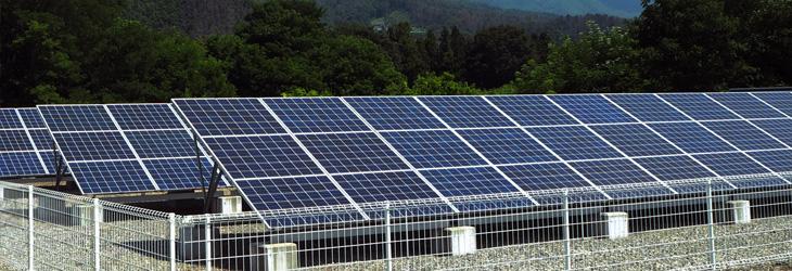 太陽光発電の主流は自家消費型に?注目される背景やメリット・注意点